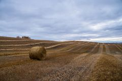 Tempo de colheita canadense Hay Bale da ação de graças Fotos de Stock Royalty Free