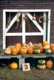 Tempo de colheita, exploração agrícola de Nova Inglaterra Fotos de Stock
