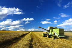 Tempo de colheita, machin da liga e céu azul Foto de Stock