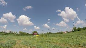 Tempo de colheita no filme do verão video estoque