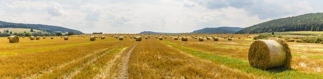 Tempo de colheita - pacotes da palha em um campo Foto de Stock