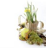 Tempo de Easter Fotos de Stock Royalty Free
