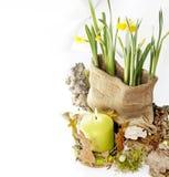 Tempo de Easter Fotos de Stock