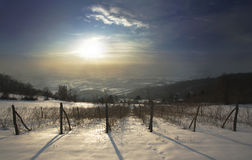 Tempo de inverno Fotografia de Stock Royalty Free
