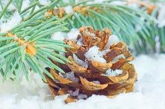 Tempo de inverno Fotografia de Stock