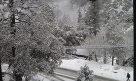 Tempo de inverno nevado fotografia de stock royalty free