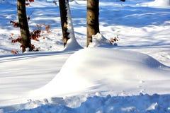 Tempo de inverno Paisagem em pedras de Poiana Brasov e de Salomon Estrada à estação do inverno ilustração stock