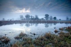 Tempo de manhã na área do pântano Imagem de Stock Royalty Free