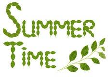 Tempo de verão feito do leav fresco foto de stock