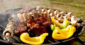 Tempo del barbecue Fotografia Stock Libera da Diritti