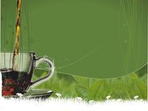 Tempo del tè Immagini Stock Libere da Diritti