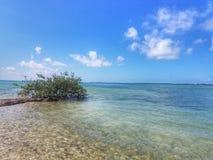 Tempo dell'isola Immagini Stock