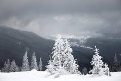 Tempo della bufera di neve Fotografia Stock