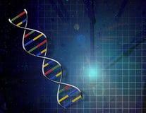 Tempo della genetica Immagini Stock