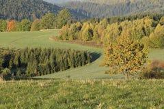 Tempo di autunno Fotografie Stock