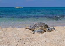 Tempo di distendersi sulla spiaggia Fotografie Stock Libere da Diritti