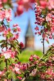 Tempo di primavera in una città fotografie stock libere da diritti