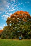 Tempo di rastrellare le foglie immagini stock
