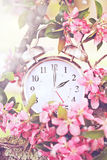 Tempo di risparmio di luce del giorno della primavera Immagine Stock