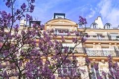 Tempo di sorgente a Parigi Fotografia Stock Libera da Diritti