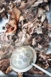 Tempo di uccisione del maiale Immagini Stock