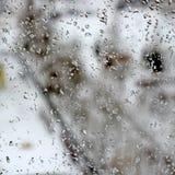 Tempo difettoso di inverno Immagine Stock