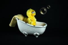 Tempo do banho Imagens de Stock