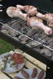 Tempo do BBQ Imagem de Stock Royalty Free