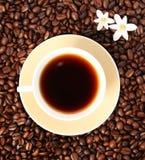 Tempo do café Imagens de Stock