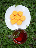 Tempo do chá. Imagem de Stock Royalty Free