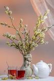 Tempo do chá com salgueiro de florescência Imagem de Stock Royalty Free