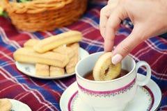 Tempo do chá do piquenique fotos de stock