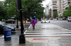 TEMPO DO DIA CHUVOSO NO WASHINGTON DC PRINCIPAL imagem de stock royalty free