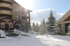 Tempo do esqui Imagem de Stock Royalty Free