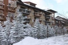 Tempo do esqui Fotografia de Stock Royalty Free