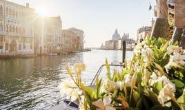 Tempo do nascer do sol em Veneza com canal grande e construções coloridas Foto de Stock Royalty Free