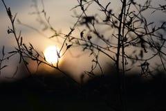 Tempo do por do sol Imagens de Stock