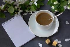 Tempo e felicidade de relaxamento com xícara de café foto de stock royalty free