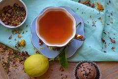 Tempo e limão do chá foto de stock