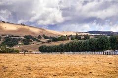 Tempo em mudança ao princípio de outubro perto de Gilroy, Califórnia fotografia de stock royalty free