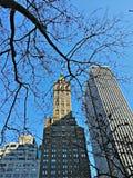 tempo freddo nel nyc Fotografia Stock