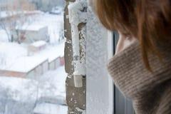 Tempo frio extremo Foto de Stock Royalty Free