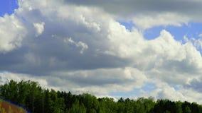 Tempo-lapso com câmera da bandeja-câmera As nuvens estão movendo-se sobre árvores verdes com um céu azul Paisagem filme