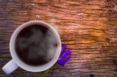 Tempo na manhã, tempo bonito de Coffe Imagem de Stock