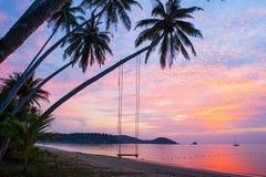 Tempo pacifico, belle nuvole e cielo di tramonto Oscillazione e coconu Immagine Stock