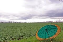 Tempo piovoso Fotografie Stock Libere da Diritti