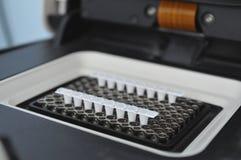 Tempo real do PCR Fotos de Stock Royalty Free