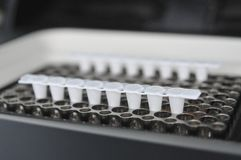Tempo real do PCR imagens de stock