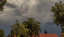 Tempo tormentoso sazonal Gauteng South Africa do verão fotografia de stock royalty free