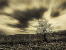 Tempo ventoso Fotografia Stock Libera da Diritti